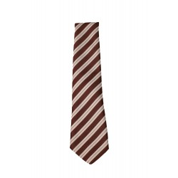 Senior College Tie