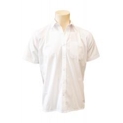 Senior Boys Short Sleeve Shirt